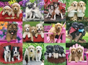 Puzzle Castor 500 -  Sunrise at Moraine Lake, Canada