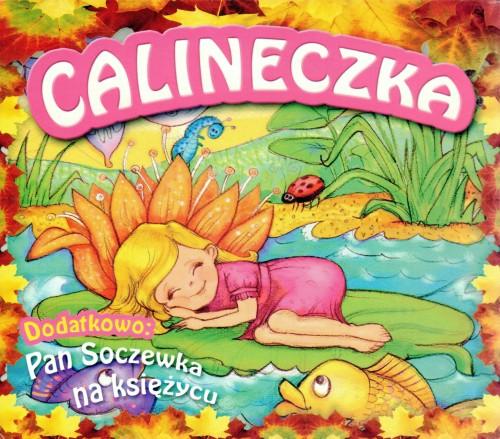 Puzzle Castor 2000 Dom Muchomor Toadstool Cottage